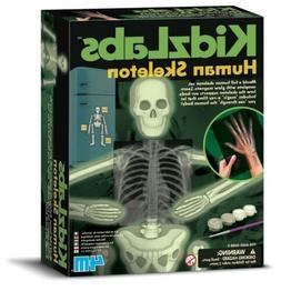 4M KidzLabs Glow Human Skeleton Science Kit