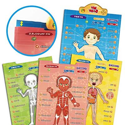 BEST LEARNING i-Poster My Body - Interactive Human Anatomy...