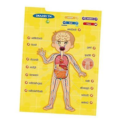 BEST Body - Interactive Educational Human Anatomy...