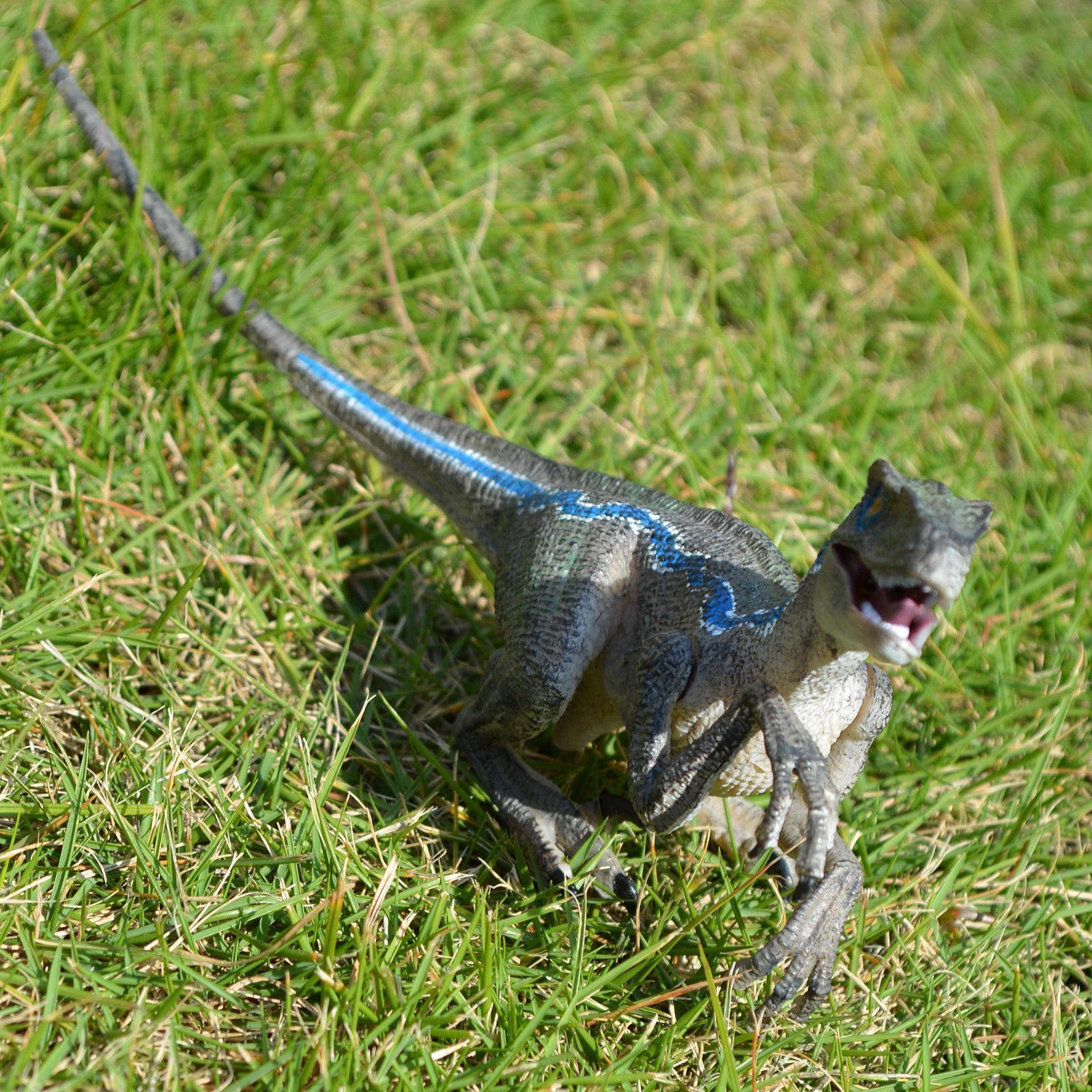 Jurassic Blue Raptor Velociraptor Birthday Gift