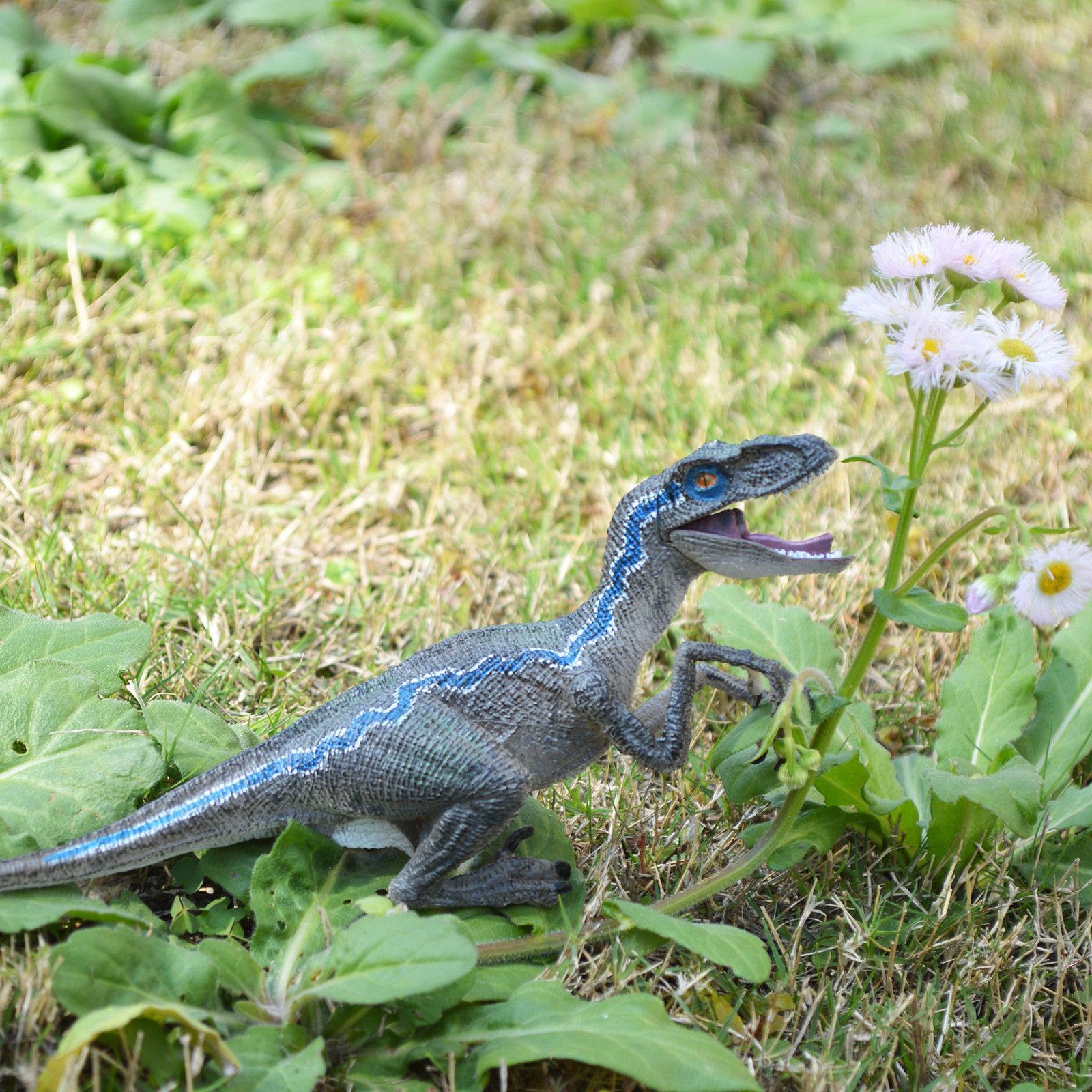 Jurassic Velociraptor Birthday Gift