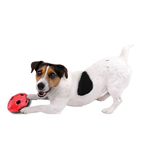 Nerf Dog 6in TPR Red,