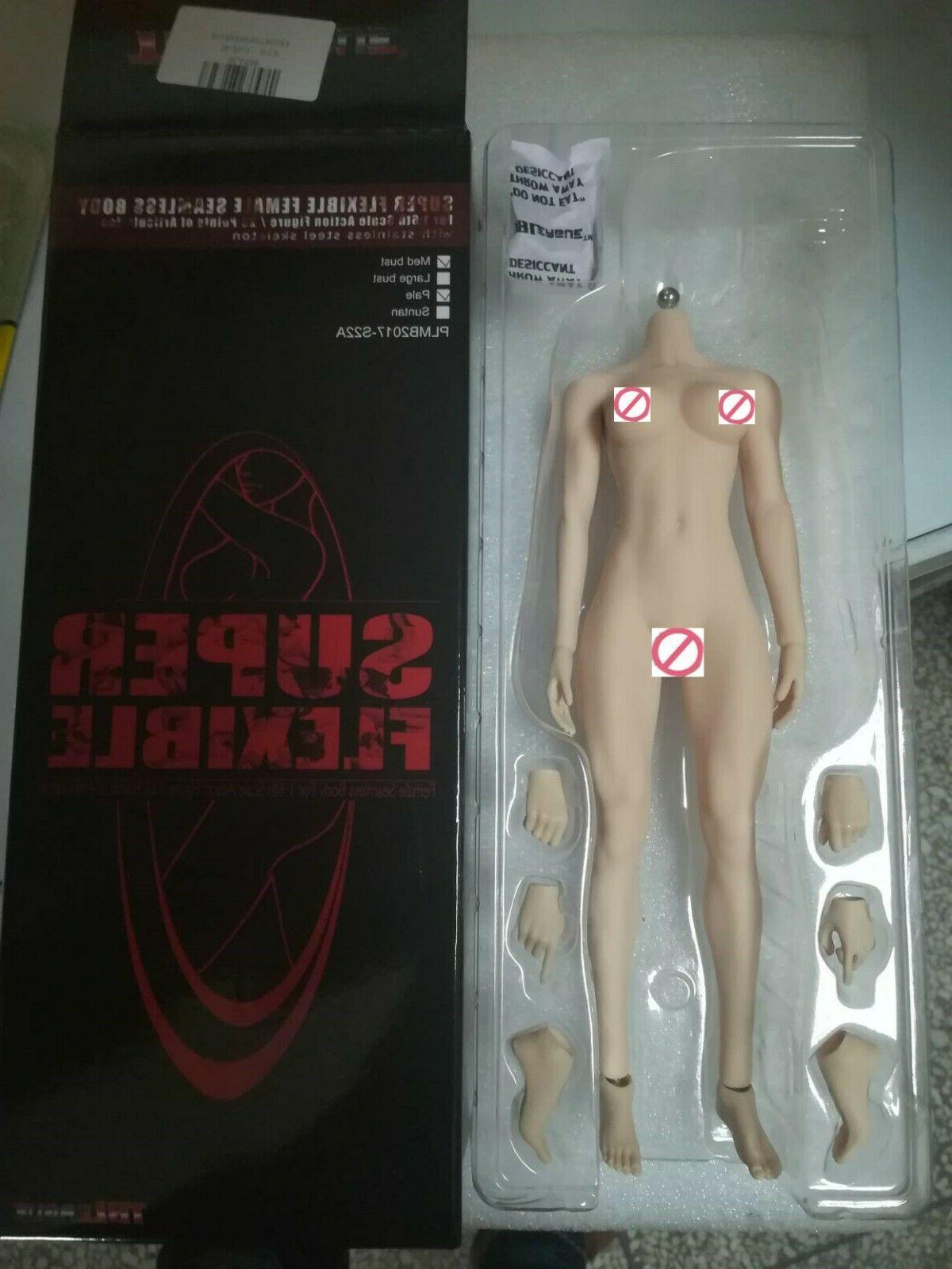 US 1/6 Phicen Female Figure Body Model TBLeague S22A Pale Mi
